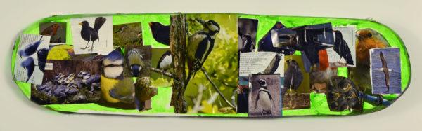 Birds by Derek Cassie