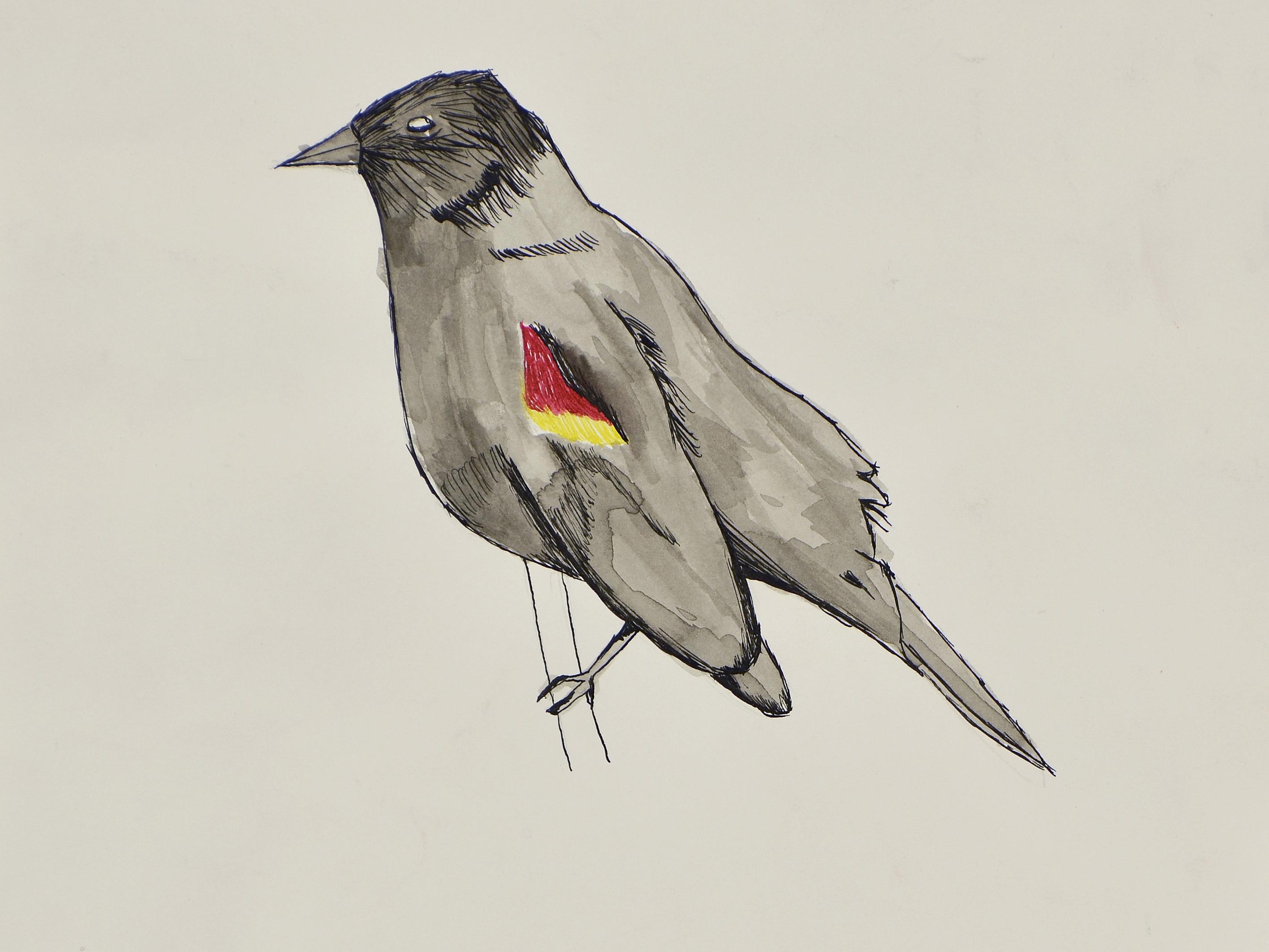 9876 || 2552 || Bird