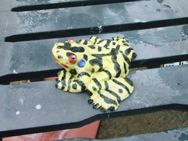 Yellow Tree Frog by Venus Figurine