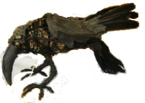 copyblackbird by widow twanky