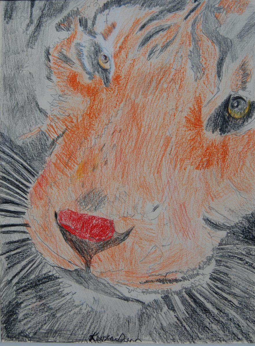 18512 || 3508 || Tiger