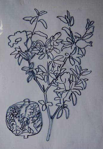 Plant Form by Scott Park