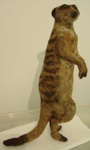 meerkat by BREATHE
