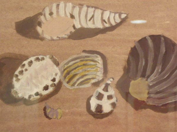 Shells by Grace Tunnell