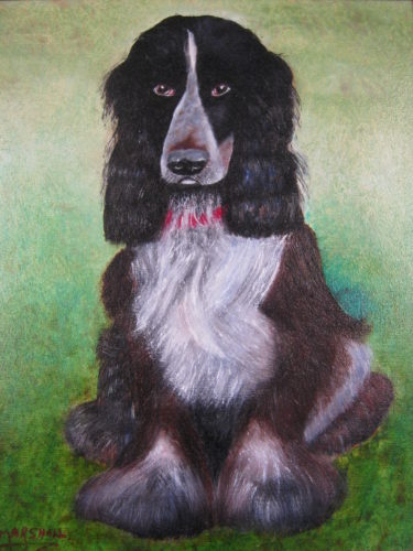 Jasper the Spaniel by Eric  Marshall