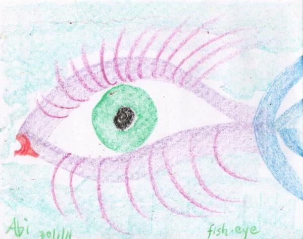 fish-eye by Abi Rhodes
