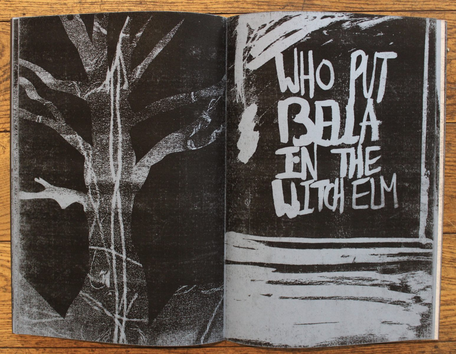 44889 || 6155 || Who put Bella in the Witch Elm? (book)