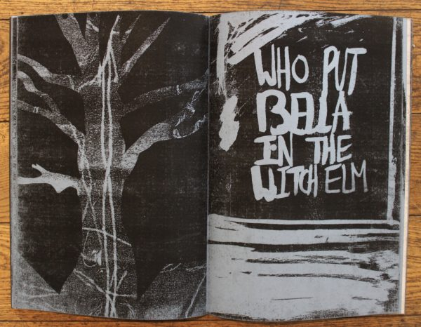 Who put Bella in the Witch Elm? (book) by Sinead McGeechan