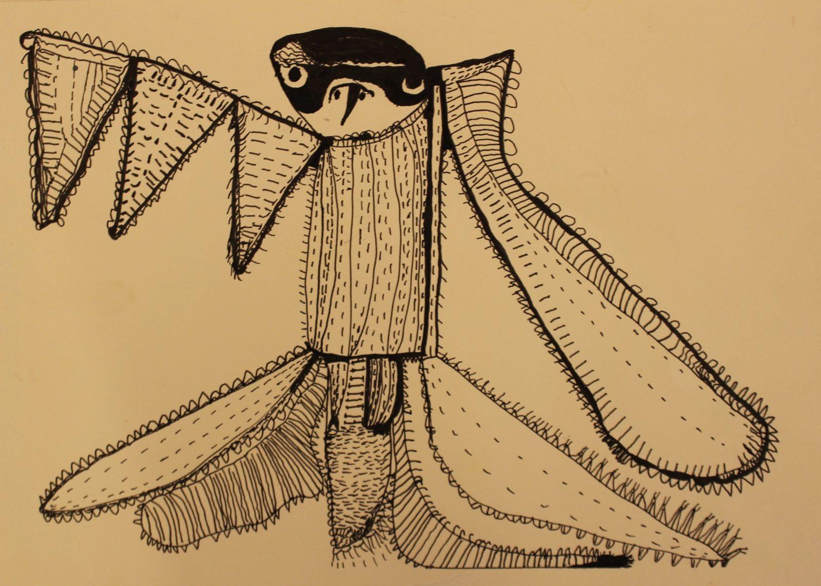 38252 || 5693 || Peregrine Falcon