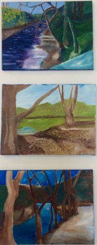 Landscapes by Glen