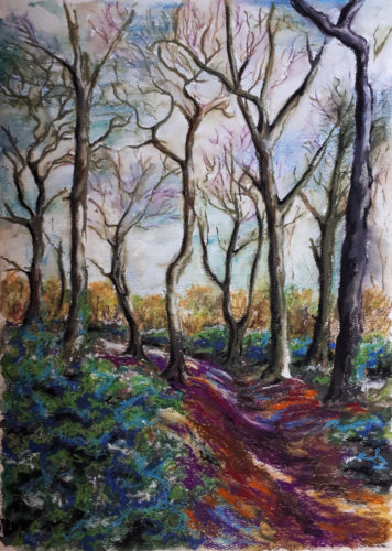 Highgate Woods by Niki Gibbs