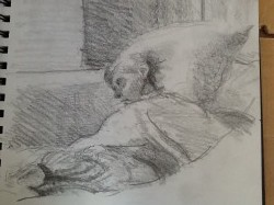 Olive in bed by Life drawing