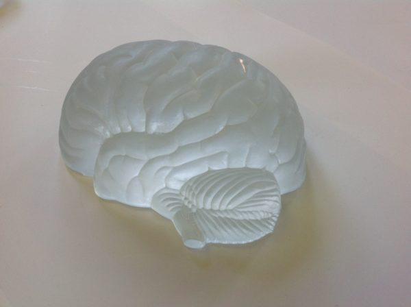 Brain by DEC
