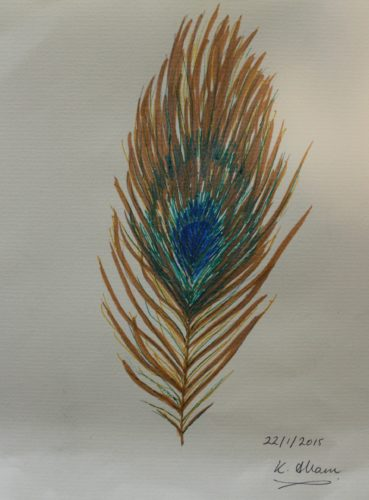Peacock Feather by Katie Allam