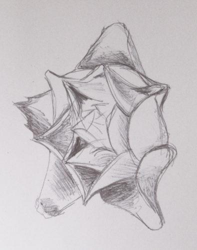 Rose 1 by Colette Evans