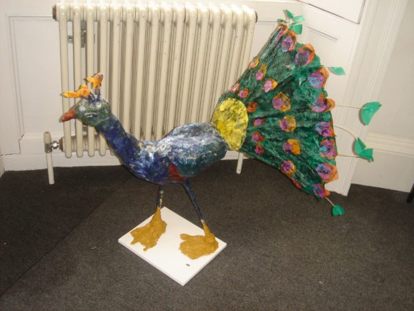 Peacock by Dolls House