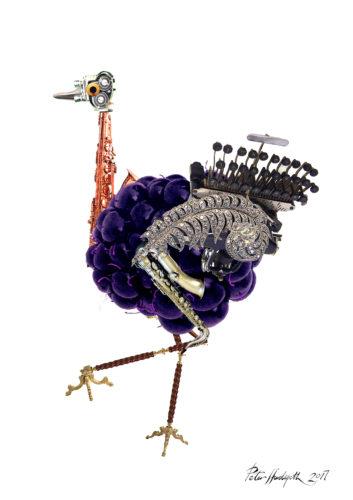 Ostrich by illustratorPete