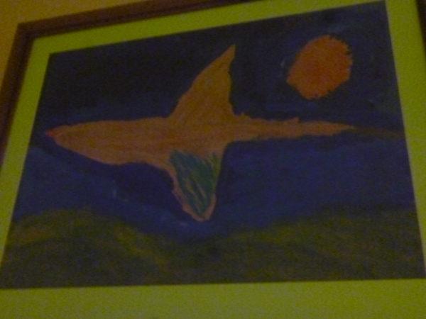Bird with Orange Sunlight by Daniel Arundel