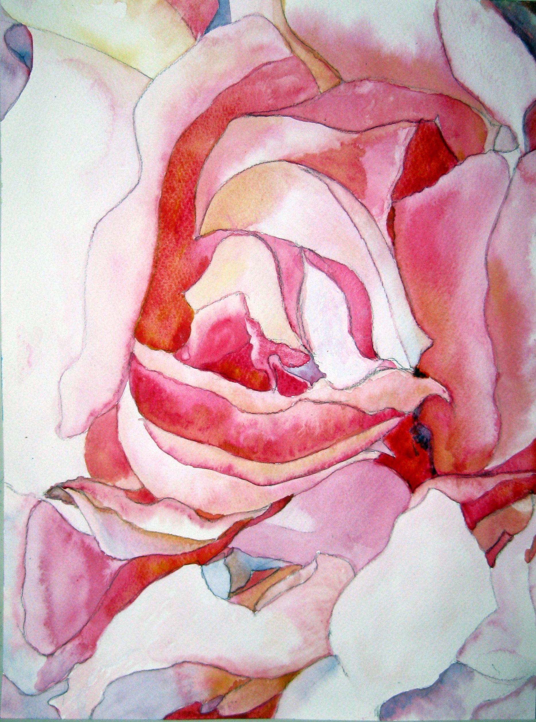 16444    3175    Rose