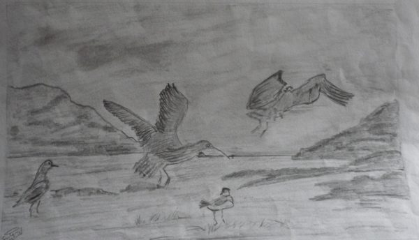 Birds in flight along the sea front. by Susan Westwood