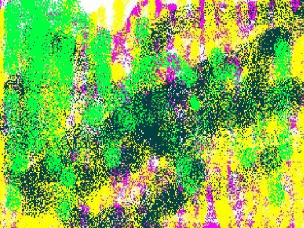 Spray by Michelle Childs