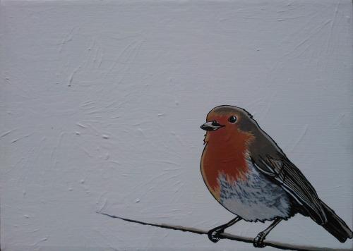 winter robin by unbritishbirds