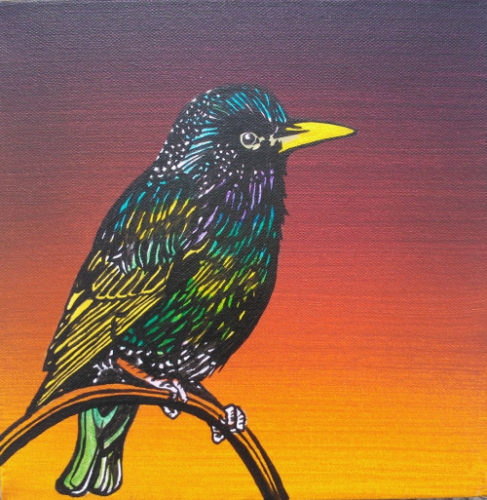 starling the dictator by unbritishbirds