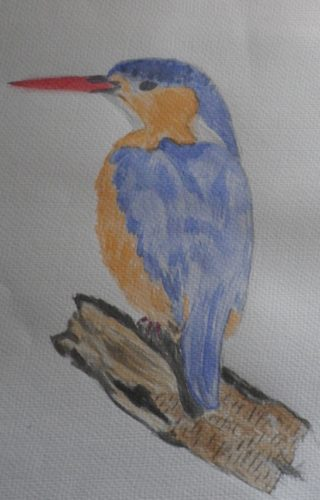 Kingfisher by Susan Westwood