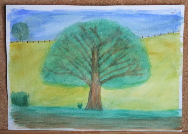 Tree In A Meadow by My art unfolding