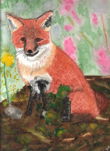 Lindas fox-cub by Linda Slater