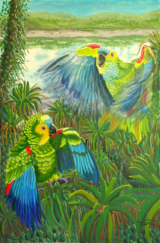 Amazon Parrots Flying in Forest by Marisa Rehana Mann