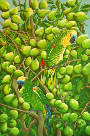 Amazon Parrots in Guava Tree by Marisa Rehana Mann
