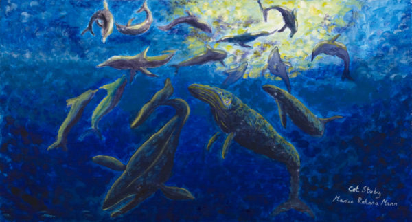Cetacean Study by Marisa Rehana Mann