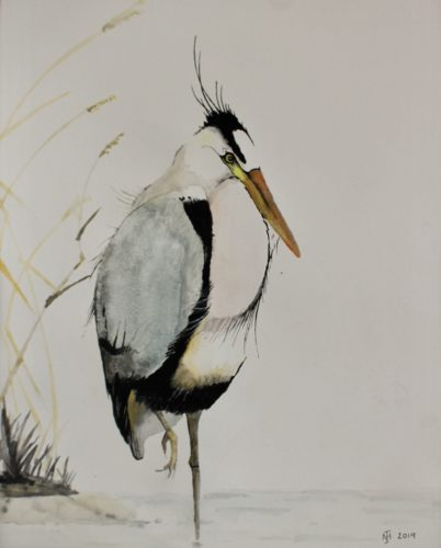 Heron by Frog on timber