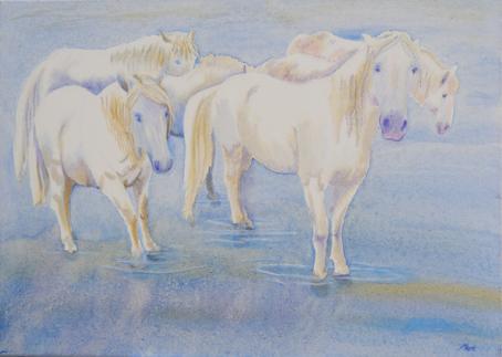 Horse Staring by Marisa Rehana Mann