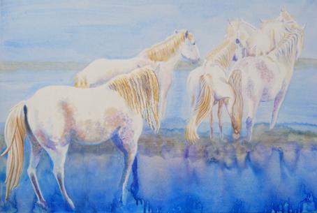 Kicking Horse by Marisa Rehana Mann