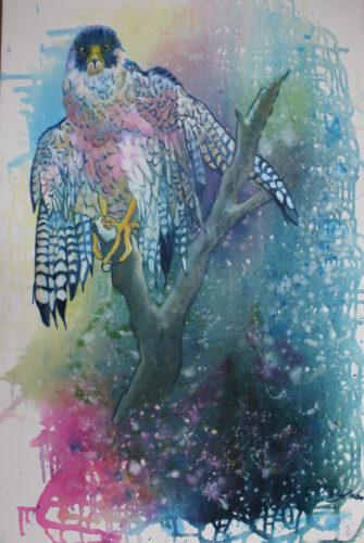 Peregrine 2 by Marisa Rehana Mann
