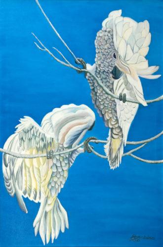 Umbrella Cockatoos by Marisa Rehana Mann
