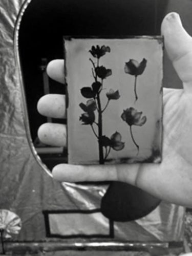 Finished wetplate collodion photogram fresh from the darktent by Drew Fox