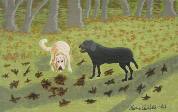 Autumn Dogs by Autumn Squirrels