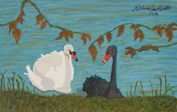 Autumn Swans by Winter Ducks