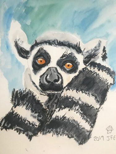 lemur by Jas Elbaccush