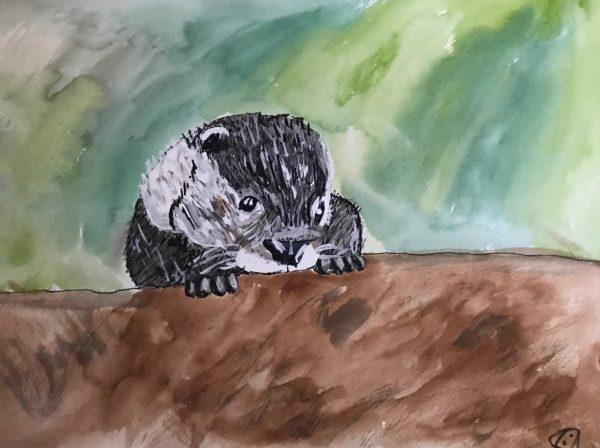 otter by Jas Elbaccush