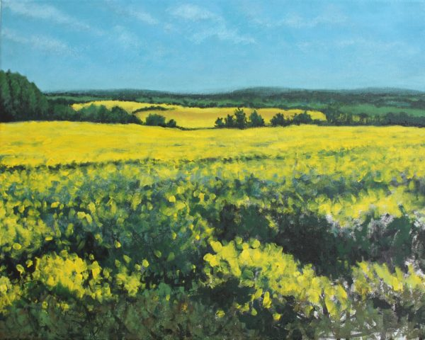 Rapeseed by Golden Sunflower