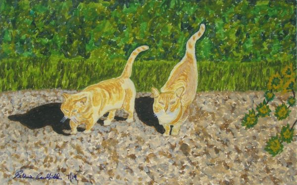 Spring Cats by Deborah Caulfield