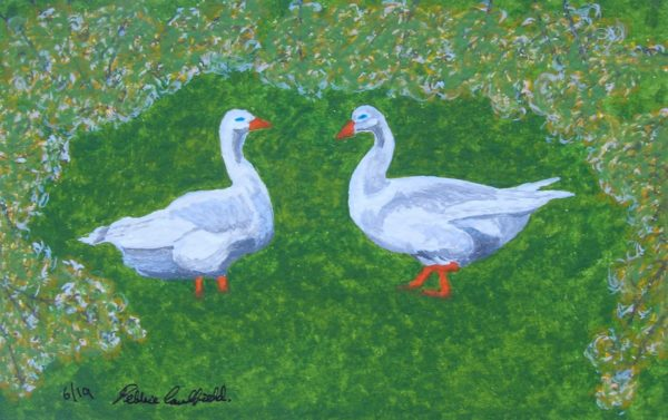Spring Geese by Autumn Squirrels