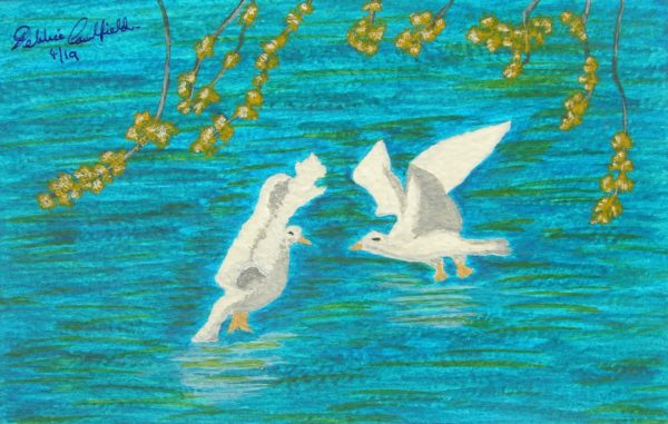 Spring Seagulls by Deborah Caulfield