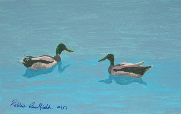 Summer Ducks by Autumn Geese