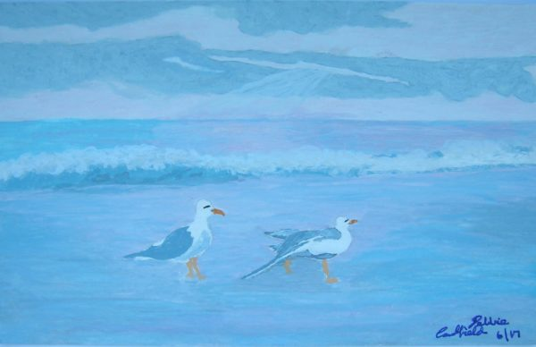 Summer Seagulls by Winter Ducks