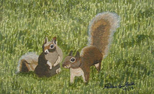 Summer Squirrels by Winter Ducks